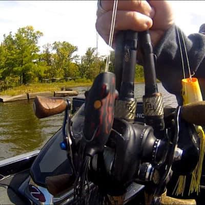 Dogfish Challenge #8