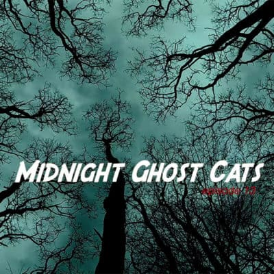 Midnight Ghost Cats #1