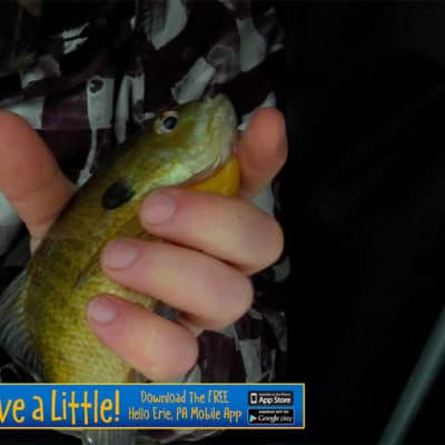 Misery Loves Crappies #18